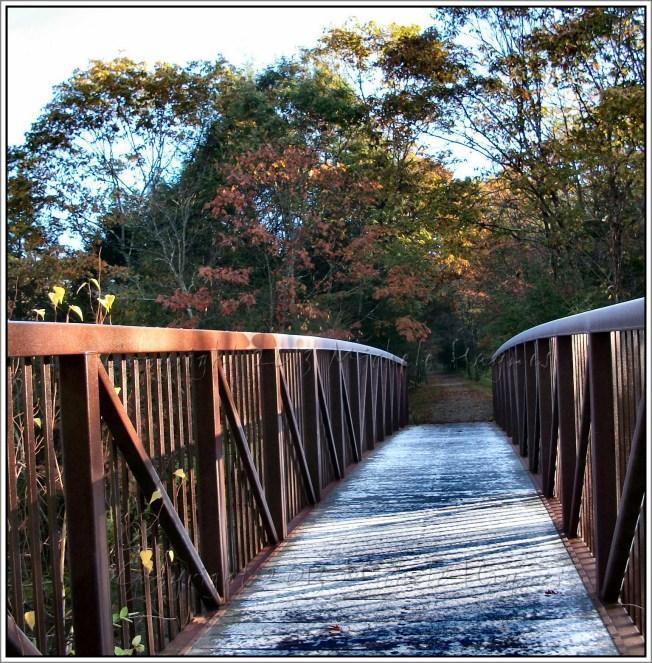 Bridge to New Life
