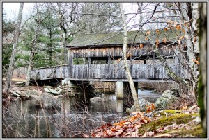Covered pedestrian bridge over the Eightmile River in Devil's Hopyard State Park, East Haddam, CT