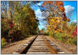 Colorful fall scene