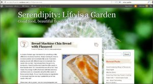 Serendipity: Life is a Garden Blog