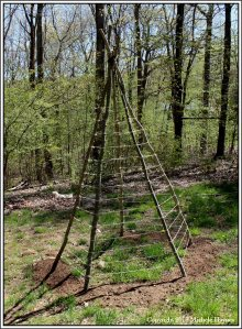 Teepee trellis with twine