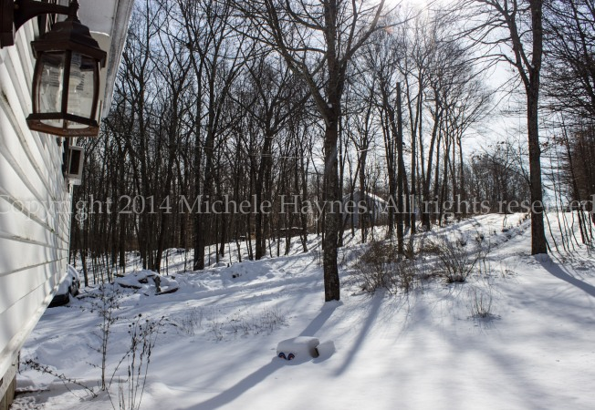 Winter scene taken by ME with a huge, in your face watermark