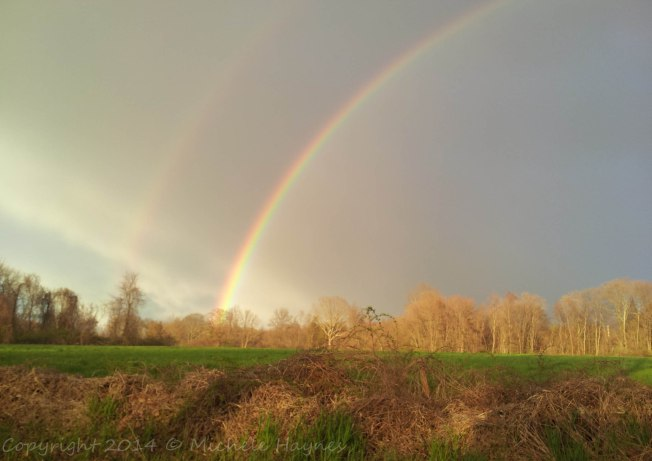 Double rainbow captured Sunday, May 4, 2014. Copyright 2014 Michele Haynes. All Rights Reserved.