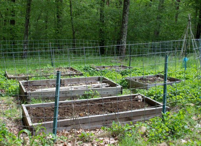 "Just remember that this is a ""Before"" shot. It is all potential at this point. Those raised beds are filled with busy earthworms doing their thing. The soil is heavenly -- soft and dark brown, full of organic matter and microbes."